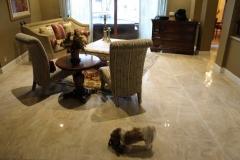 Porcelain Tile Flooring-355